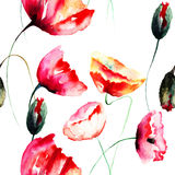 Watercolor illustration of Poppy flowers Stock Photos