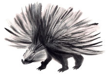 Watercolor illustration of a porcupine Royalty Free Stock Photos