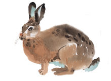 Watercolor illustration of a rabbit Stock Images