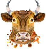 Watercolor illustration of a red bull. Bull watercolor graphics. Bull animal illustration with splash watercolor textured background vector illustration