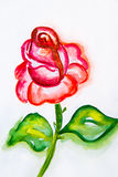 Watercolor illustration of a red rose with green leaves close up Royalty Free Stock Photo