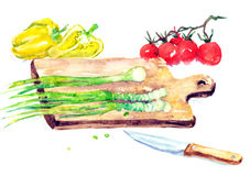 Watercolor Illustration Salad Cooking. Hand painted watercolor illustration of food Stock Photos