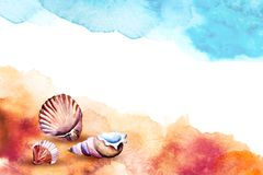 Watercolor illustration of a sea shells on a beach. vector illustration