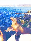 Watercolor illustration of seal at the ocean royalty free illustration