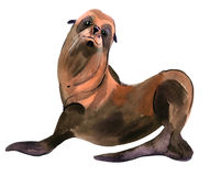 Watercolor illustration of  seal in white background. Stock Image