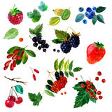 Watercolor illustration of a set  different berries image. transparent   shades. Labels, background, card, pattern. Watercolor illustration of a set of different Stock Photos
