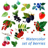 Watercolor illustration of a set of different berries image. transparent watercolor different shades. Labels, background, card, pa. Ttern royalty free illustration