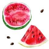 Watercolor illustration, set. Half a watermelon, a slice of watermelon. Stock Photos