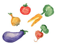 Watercolor illustration, a set of vegetable Royalty Free Stock Images