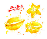 Watercolor illustration of star fruit. Whole and sliced with paint smudges and splashes vector illustration