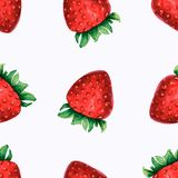 Watercolor illustration of strawberry . Seamless pattern Seamless pattern with watercolor hand drawn cute strawberries on white royalty free illustration