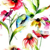 Watercolor illustration of Summer flowers Stock Photos