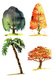 Watercolor illustration of trees Royalty Free Stock Image