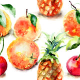 Watercolor illustration of tropical fruits vector illustration