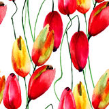 Watercolor illustration of Tulips flowers Royalty Free Stock Image