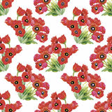 Watercolor illustration of Tulips flowers, seamless pattern Royalty Free Stock Images
