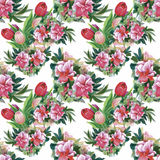 Watercolor illustration of Tulips flowers, seamless pattern Stock Image