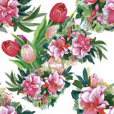 Watercolor illustration of Tulips flowers, seamless pattern Stock Images