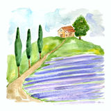Watercolor illustration with Tuscan landscape with lavender field and country house in Europa . Royalty Free Stock Photography