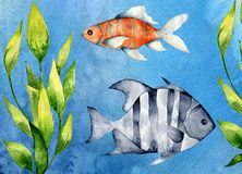 Watercolor illustration of an underwater world with fish and plants. vector illustration