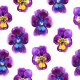 Watercolor illustration of Violet flowers. Seamless pattern. Seamless background of beautiful pansy. Stock Photo