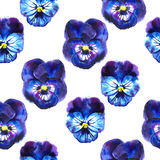 Watercolor illustration of Violet flowers. Seamless pattern. Seamless background of beautiful pansy. Stock Images