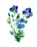 Watercolor illustration of a violets on a white background. Stock Photography