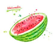 Watercolor illustration of watermelon stock illustration