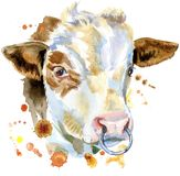 Watercolor illustration of a white bull royalty free illustration