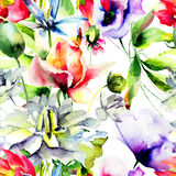 Watercolor illustration with wild flowers. Stock Image
