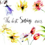 Watercolor illustration with wild flowers. Title the best spring ever; Hand drawn lettering design Royalty Free Stock Image