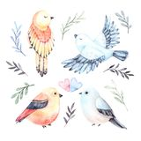 Watercolor illustrations. Four cute birds with green branches an. D leaves. Spring mood. Floral Design elements. Perfect for invitations, postcards, prints and stock illustration