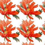 Watercolor seamless pattern with hand drawn colorful peony flowers