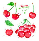 Watercolor illustrations set of cherries. With paint splashes Stock Image
