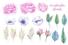 Watercolor Illustrations. Spring Leaves, Peonies And Anemones Fl Royalty Free Stock Photo