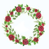 Watercolor illustration  wreath of red roses and green branches, leave. Illustration for greeting cards, invitations. Watercolor illustration wreath of red roses Royalty Free Stock Images