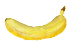 Watercolor image of banana Stock Image