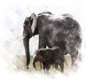 Watercolor Image Of Elephants vector illustration