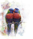 Watercolor Image Of  Parrots Stock Photography
