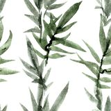 Watercolorand ink painted green leaves of bamboo Stock Illustration