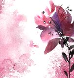 Watercolor flower card Royalty Free Stock Image
