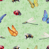 Watercolor insects illustrations Royalty Free Stock Photography