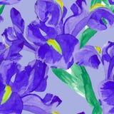 Watercolor iris flower seamless pattern Stock Photo