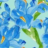 Watercolor iris seamless pattern. Stock Photography