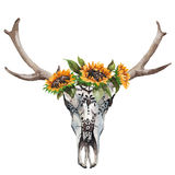 Watercolor isolated bull`s head with flowers and feathers on white background. Boho style. Skull for wrapping, wallpaper Stock Photo