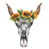 Watercolor isolated bull`s head with flowers and feathers on white background. Boho style. Skull for wrapping, wallpaper Royalty Free Stock Photos