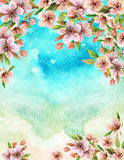 Watercolor japanese cherry blossoms Royalty Free Stock Image