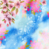 Watercolor japanese cherry blossoms Royalty Free Stock Photos