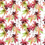 Watercolor japanese maple leaves seamless pattern Stock Photo