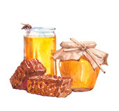 Watercolor jar with honey and honeycomb isolated Royalty Free Stock Image